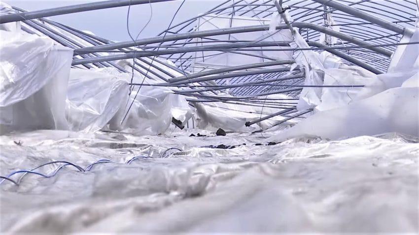 Solarii distruse si pierderi de zeci de milioane, dupa o furtuna devastatoare