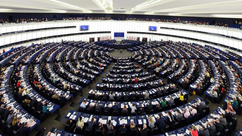 Muncitorii sezonieri din Romania, subiect de dezbatere in Parlamentul European