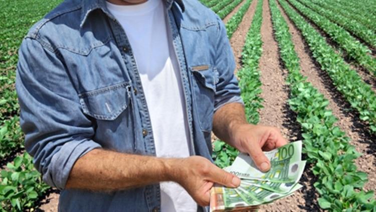 """Clubul Fermierilor: """"Accesul anticipat la subventii poate salva afacerile agricole"""""""