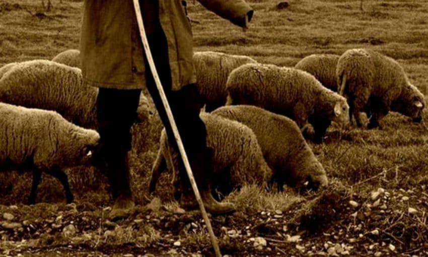 Cioban ucis de coronavirus! Piata unde vindea a fost inchisa de urgenta!
