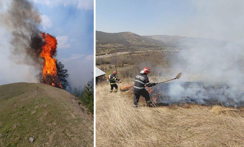 Romania, mistuita de flacari! Mii de hectare au ars de la inceputul anului