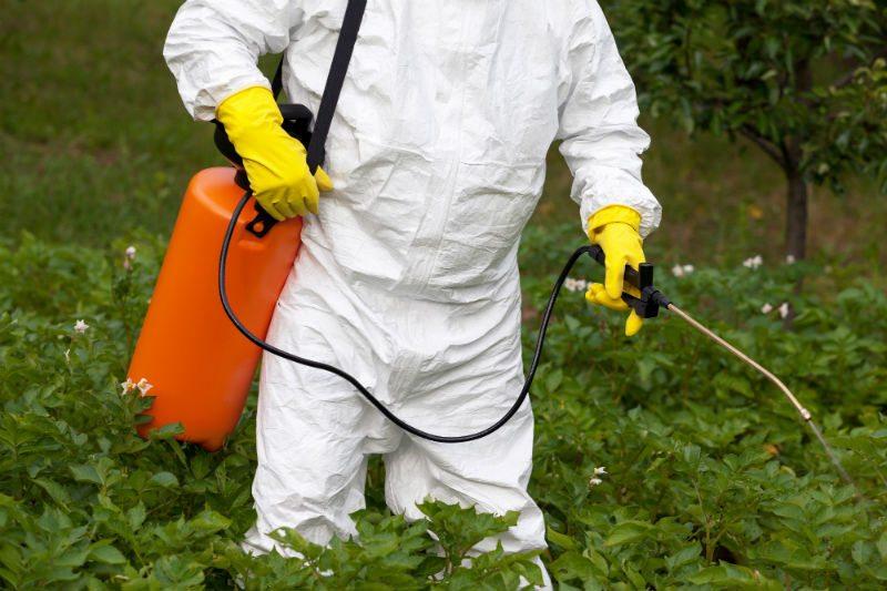 Obiectiv UE: Reducerea cu 50% a utilizarii de pesticide. Realist sau nu?