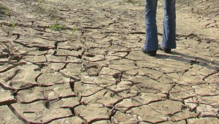 VIDEO Fermierii se roaga pentru cat mai multe ploi. Culturile le-au fost distruse 100%