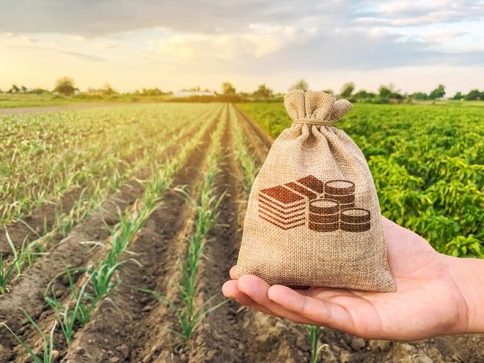 Mai multi bani europeni pentru producatorii agricoli! Anuntul de la Bruxelles