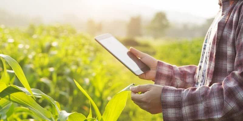 VIDEO Agricultura viitorului! Totul se controleaza de pe telefonul mobil