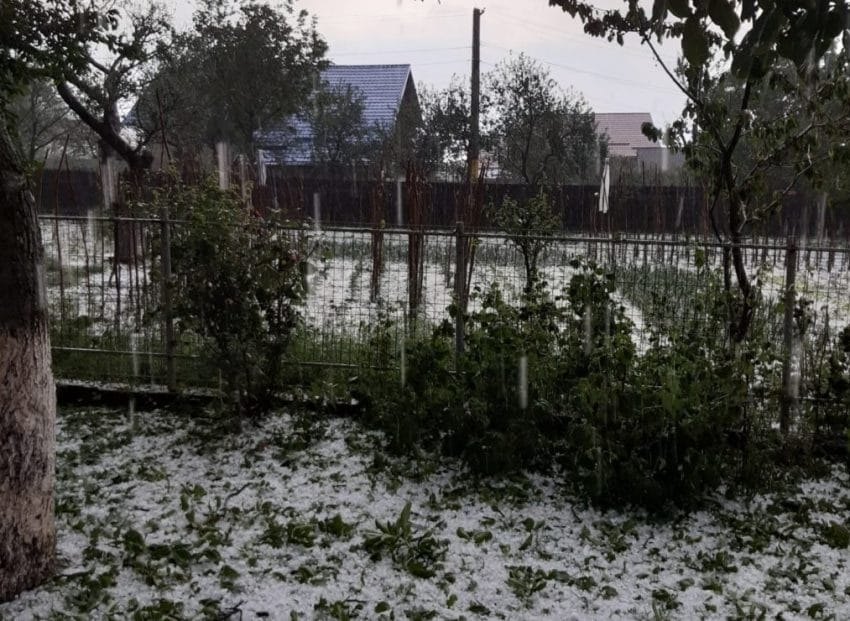 Fenomene meteo extreme! Grindina a lovit fara mila culturile agricole si gospodariile