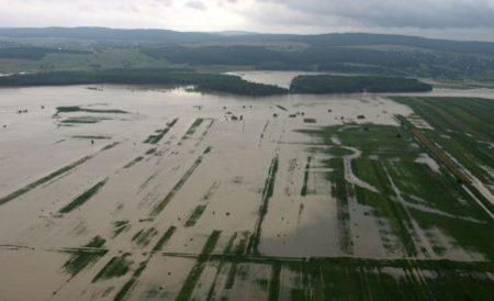 Sute de hectare de culturi agricole, afectate dupa viiturile de pe Prut
