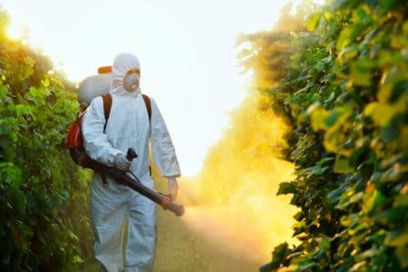 Cantitate RECORD de pesticide ILEGALE confiscata de autoritatile europene