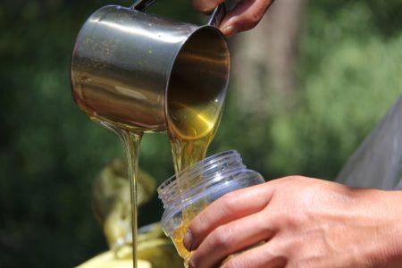 Ioan Fetea (ACA): Productia de miere din acest an va fi compromisa
