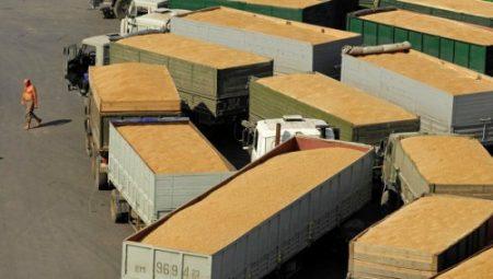 Efectele suspendarii exporturilor de cereale din aprilie, resimtite si in prezent