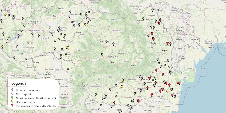 Harta raspandire Helicoverpa armigera