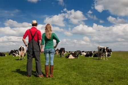 Problema fermierilor mici: NEGOCIEREA. Vand produse locale la preturi mici, iau inputuri la preturi mari. SOLUTIA
