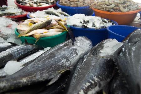 CONTROALE in pietele cu pește din Capitala. AMENZI de peste 60.000 lei si sute de mii de kg confiscate