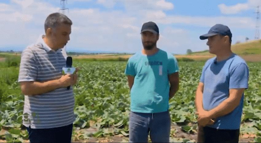 VIDEO. Portret de fermier. Cum dezvolti o afacere in legumicultura?