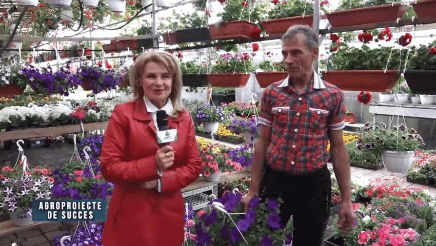 VIDEO. Agroproiect de succes. Sfaturi practice in floricultura