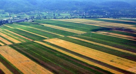 Mai putine ferme, mai mult pamant! Suprafata declarata la plata a crescut cu 235.000 hectare