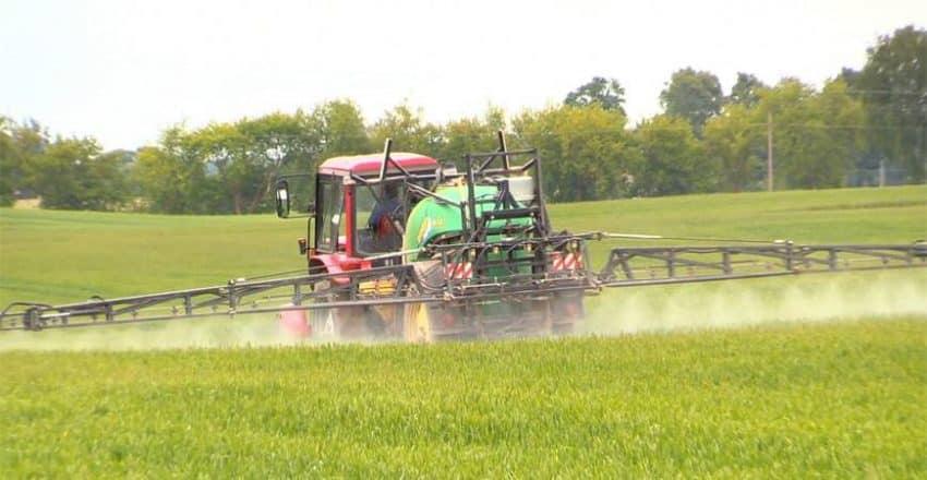 Noi reglementari FITOSANITARE pentru produse vegetale, APROBATE de MADR. Vezi documentul