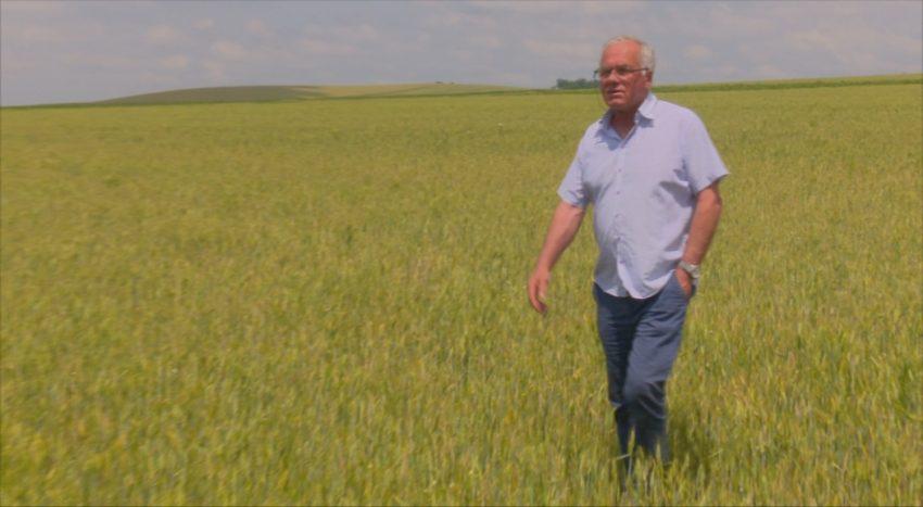 Fermieri GRABITI-VA! Termen limitat pentru instiintarea privind culturile CALAMITATE