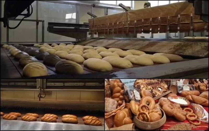 Fabrica performanta de paine si produse de panificatie din jud. Arges