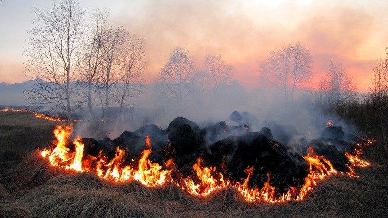"""VIDEO Ordin MADR: """"Investiti in utilaje pentru stingerea incendiilor"""""""