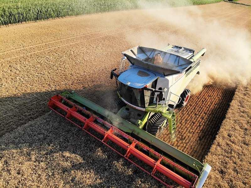 Clubul Fermierilor: Impactul productiei scazute de cereale asupra pietii