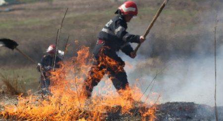Alianta pentru Agricultura ai Cooperare cere URGENT renuntarea la Ordinul 182/2020 legat de incendiile agricole