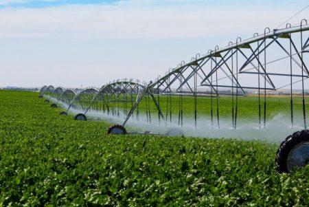 ANIF: Peste 1 MILION de hectare irigate in acest an in Romania