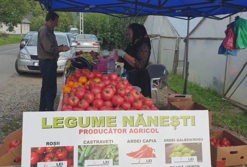 Vizita in satul Nanesti, Maramures. Solarii pline cu legume crescute ca odinioara