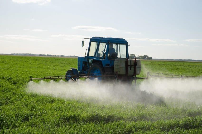 SPRIJIN pentru fermieri! A fost dat un ORDIN pentru autorizarea produselor de protectie a plantelor