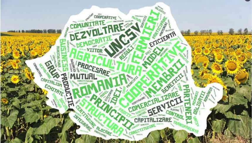 Analiza UNCSV – Cooperativele agricole se confrunta atat cu probleme organizatorice cat si de sustinere