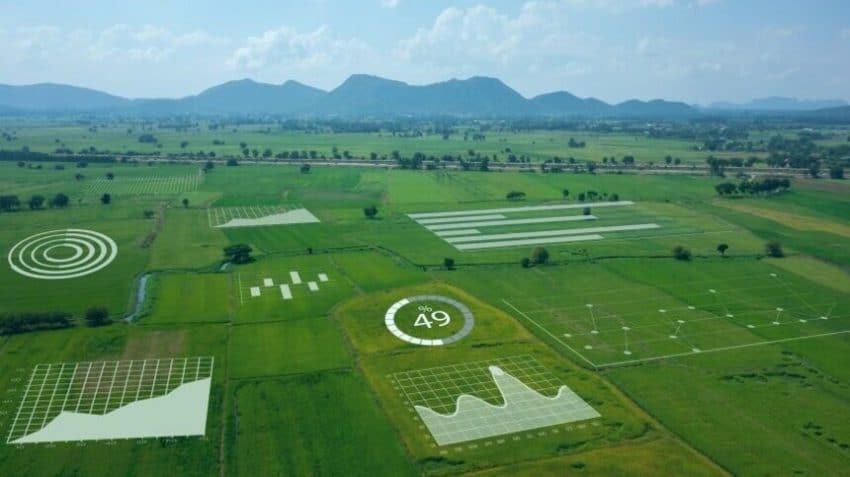 Viitorul agriculturii, bazat pe digitalizarea sectorului si eficientizarea muncii