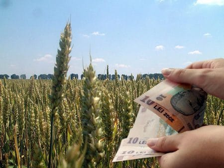 START depuneri cereri! Ordonanta pentru acordarea despagubirilor la seceta, publicata in Monitorul Oficial!