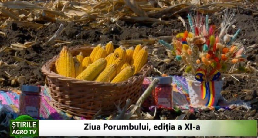 VIDEO Ziua Porumbului la cea de-a XI-editie