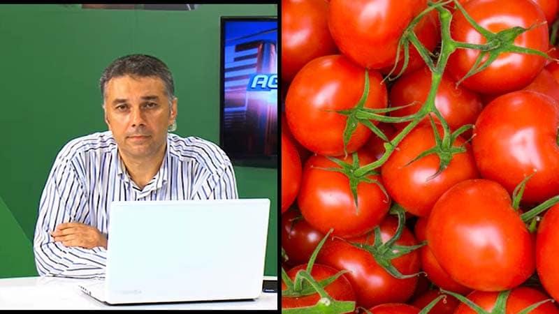 ORA 20:00 Agricultura la Raport – Probleme și soluții pentru sectorul horticol