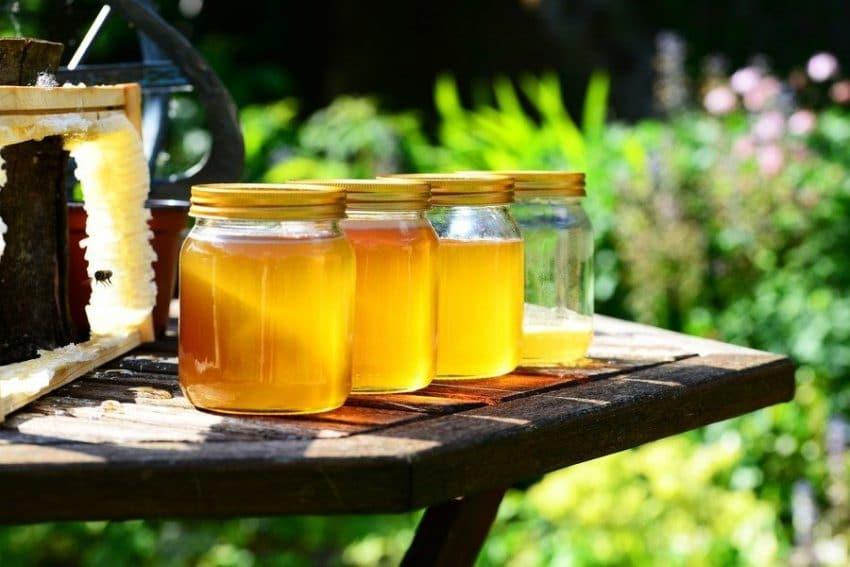 Sprijin de 240 milioane EURO pentru apicultori! Anuntul europarlamentarului Daniel Buda