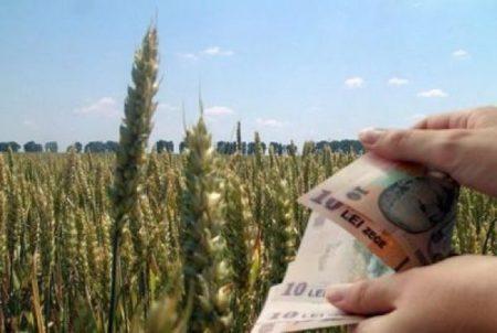 S-a decis! Ce se întâmplă cu subvențiile românilor în 2021