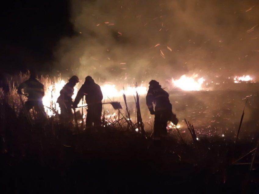 Incendiu la un depozit de cereale! Tone de porumb au fost făcute scrum