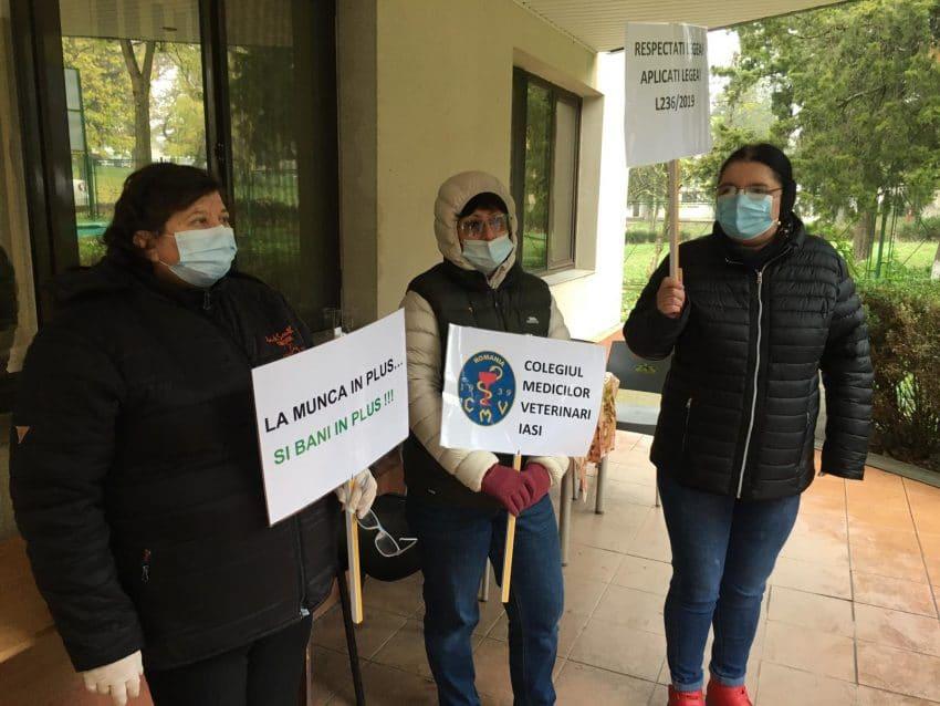 Protest al medicilor veterinari la sediul DSVSA