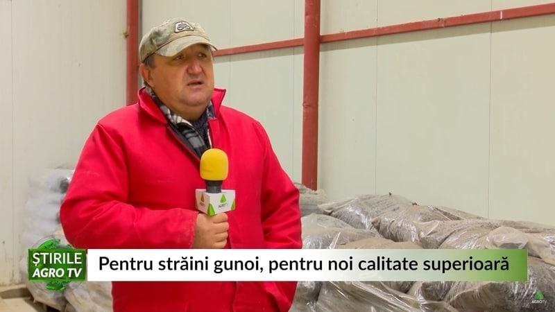 Pentru alții gunoi, pentru noi calitate superioară! Ciupercile aruncate de străini ajung pe mesele românilor