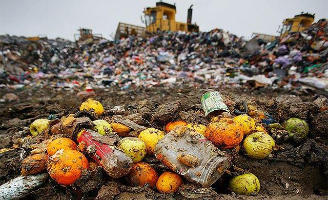 HG: Noi reglementări privind diminuarea risipei alimentare
