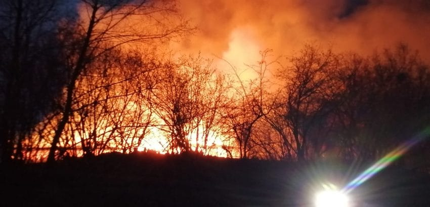 Incendiu devastator la o fermă de animale-700mp în flăcări