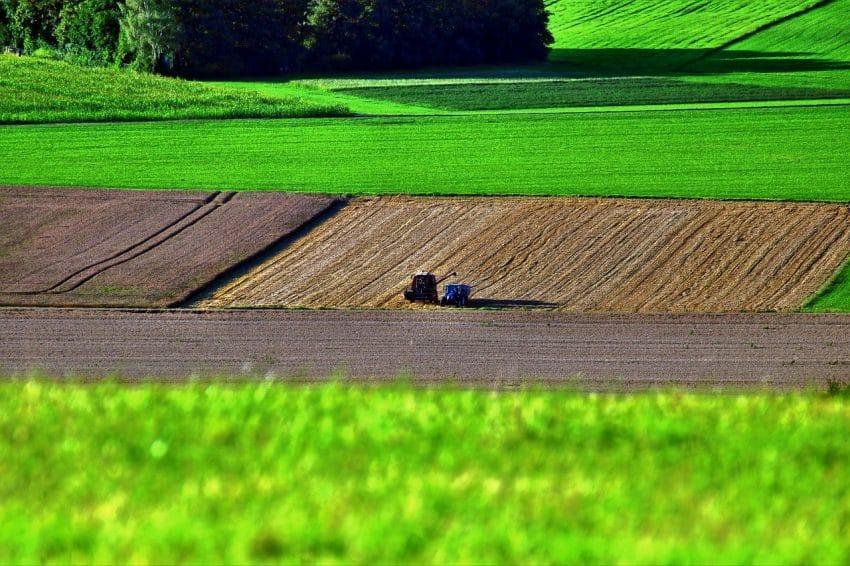 Tranzacții agricole majorate pe final de an