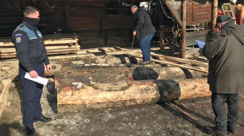 Panică printre cei care își desfășoară activitatea pe piața comercializării masei lemnoase din România. Amenzi de aproape 130 milioane lei