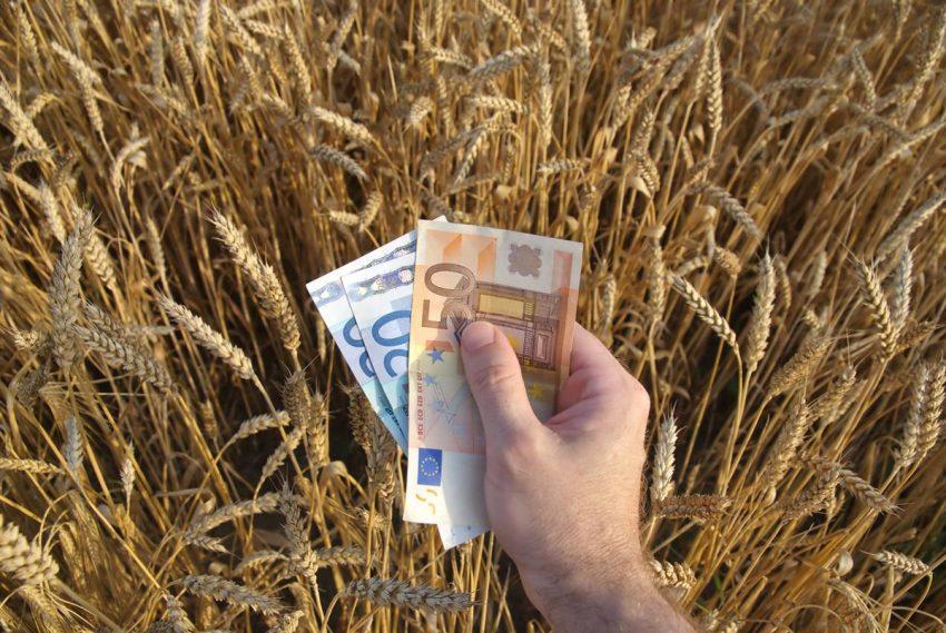 Impozit zero pe salariul minim din agricultură! Măsura anunțată de Ministrul Economiei