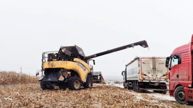 Ucraina depășit cifra de 11 milioane de tone de porumb exportat. Ce se întâmplă în România