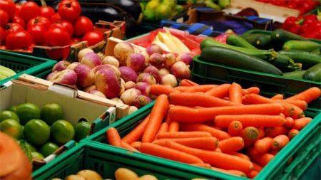 """PRO AGRO: """"Doar fermierii sănătoși pot produce hrană sănătoasă"""""""