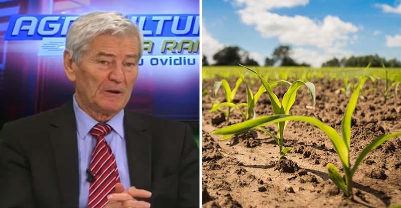 Cum se face corect fertilizarea culturilor. Sfaturi esențiale de la Valeriu Tabără