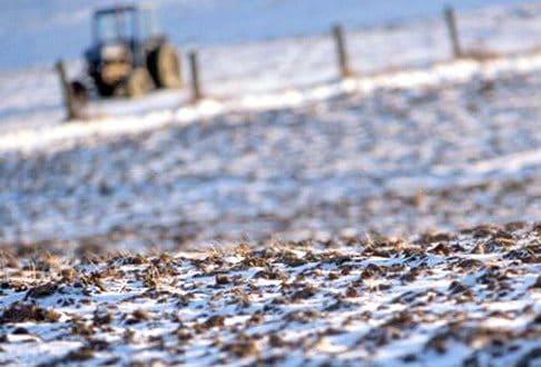 Prognoza Agrometeorologică 22-28 ianuarie. Perspective bune pentru culturile agricole