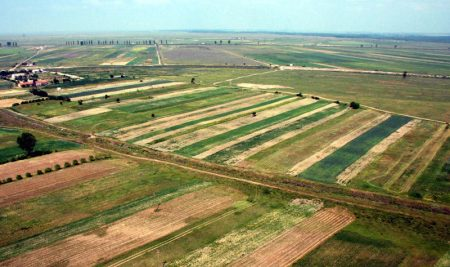 Cum poate orice fermier să obțină terenuri de la ADS? Explicații de la directorul instituției
