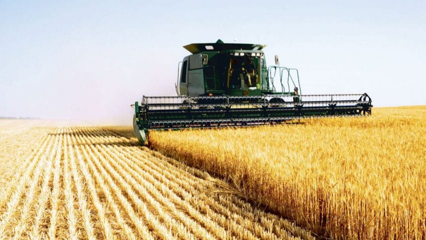 Recolte cu 50% mai bogate! SOLUȚIA pentru creșterea productivității culturilor agricole